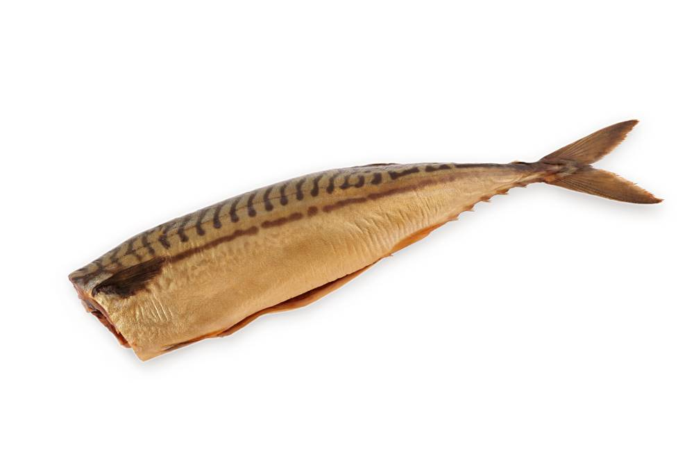 COLD SMOKED FISH PRODUCTS