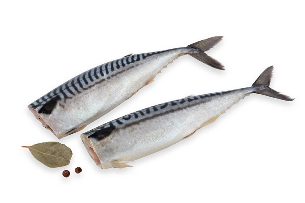 SALTED FISH PRODUCTS